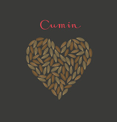 cumin seeds spice in a heart shape vector image
