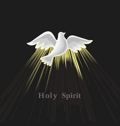 Pentecost sunday holy spirit vector