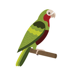 Red crowned amazon exotic parrot in flat vector