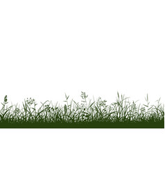 silhouettes of grass spikes and herbs seamless vector image