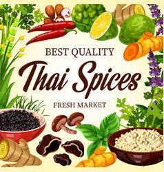Thai cooking spices and herbs asian seasonings vector