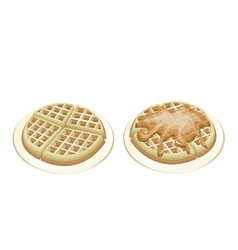 Tradition Round Waffles vector image