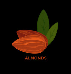almond nut cartoon vector image vector image