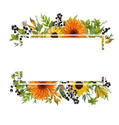 floral design horizontal card design gerbera vector image vector image