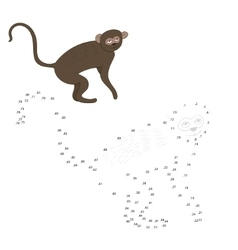 Connect dots game vervet ape vector