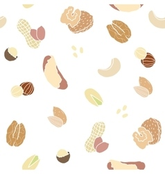 Different nuts pattern vector image