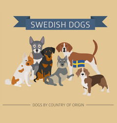 Dogs by country of origin swedish dog breeds vector