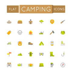 Flat Camping Icons vector image
