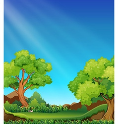 Forest and sky vector image