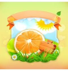 Fresh fruit label orange background for making vector
