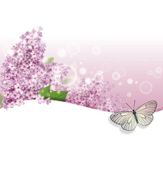 greeting card with lilac and butterfly vector image