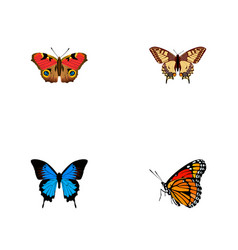 Set of moth realistic symbols with painted lady vector