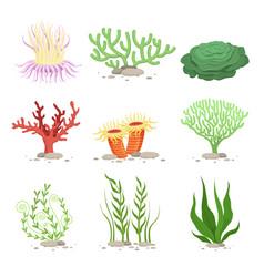 Set of underwater plants funny vector