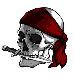 Skull of a pirate with knife vector