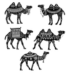 set of stylized figures of decorative camels vector image vector image