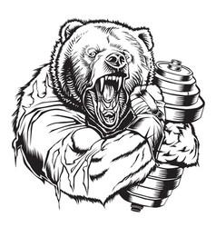Bear gym dumbell vector
