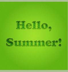 hello summer typographic inscription vector image