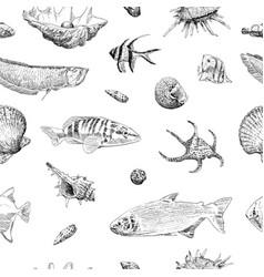 Seamless hand drawn seashells fish crabs corals vector