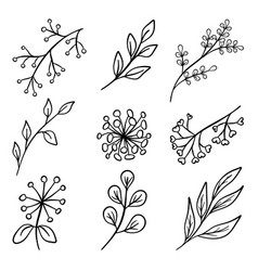 set of branch silhouettes vector image