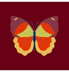 Colorful icon of butterfly isolated on red vector