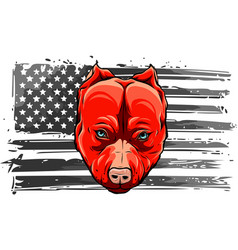american flag with head dog vector image