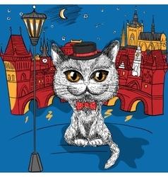 Cat in Prague Prague Castle and Charles Bridge vector