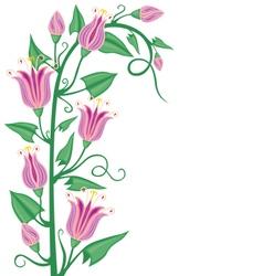 Flowering bindweed vector