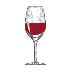 hand drawn engraved wineglass on white vector image