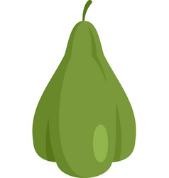 Mexican chayote icon flat isolated vector