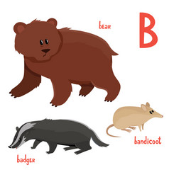 set of cute bear badger bandicoot in cartoon vector image