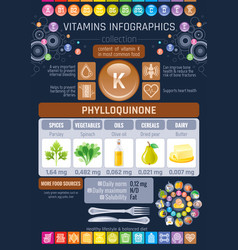 Vitamin k food icons healthy eating text letter vector
