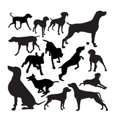 Weimaraner dog animal silhouettes vector
