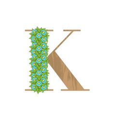 wooden leaves letter k vector image