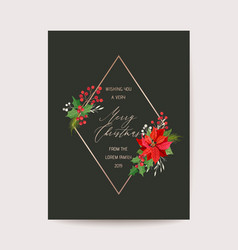 christmas greeting poinsettia flower card vector image