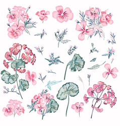 collection pink flowers and leaves vintage style vector image