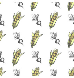Corn cob and monochrome sweet beet endless texture vector