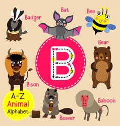 Letter b tracing baboon badger bat bear bee vector