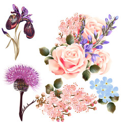 Set of detailed colored flowers vector