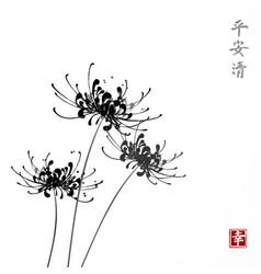Three black chrysanthemum flowers on white vector