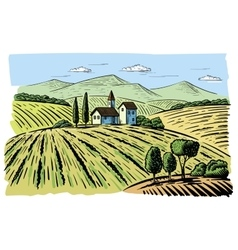 landscape with agrarian fields vector image vector image