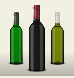 set of three realistic wine bottles without vector image vector image