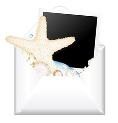 Open Envelope With Photo And Starfish vector image