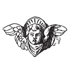 Cherub head was used on a candelabrum in certosa vector