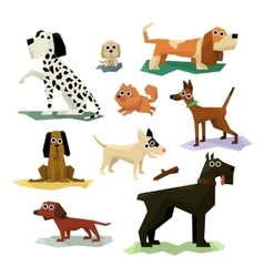 Different Dog Breeds Set vector