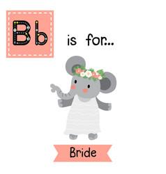 Letter b tracing bride vector