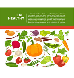 organic vegetables food poster background template vector image