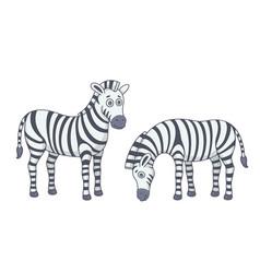 set zebras vector image
