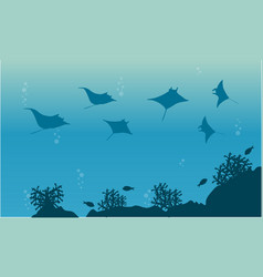 Silhouette of stingray and fish landscape vector