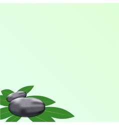 spa leaves stone background vector image