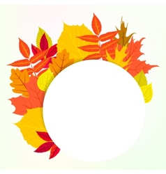 card with autumn decor and leafs vector image